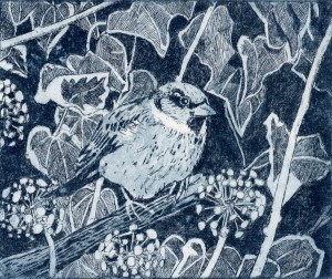 Sparrow by Janis Goodman - to be exhibited at Great North Art Show 2014