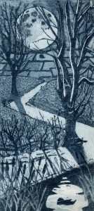 Janis Goodman - Moon shadowsmaller